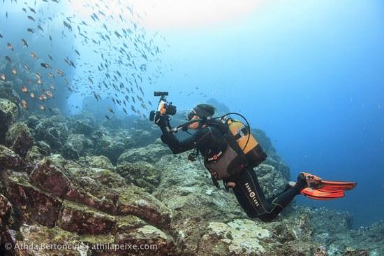 Um dos pesquisadores no momento do registro de um cardume durante a expedição (Foto: Áthila Bertoncini)