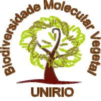 Lab. Fabiano Salgueiro