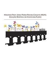 Logo - prancha