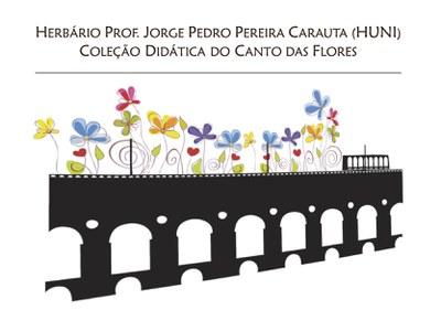 Logo Coleção Didática - definitivo