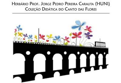 LOGO Coleção Didática do Canto das Flores