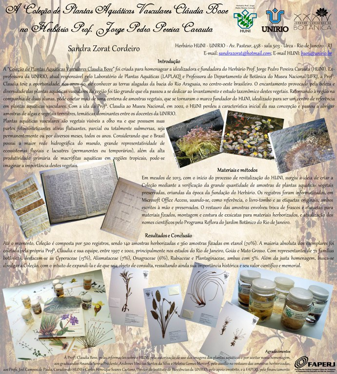 Painel Coleção de Plantas aquáticas vasculares Claudia Bove