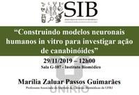 Investigação dos efeitos de canabinóides em modelos neurais humanos construídos in vitro é o tema da discussão do próximo SIB