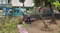 Pintura do Jardim do IB está quase concluída