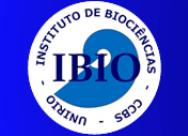 Conselho Técnico da Capes aprova criação de curso de doutorado em Ciências Biológicas