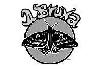 Novo número da revista 'A Bruxa' aborda simbologia animal na FAB