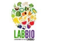 'Pirâmide alimentar: conheça e aplique '  é tema de minicurso promovido pelo Laboratório de Bioativos