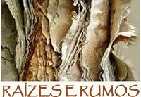 Revista 'Raízes e Rumos' recebe artigos para o próximo número